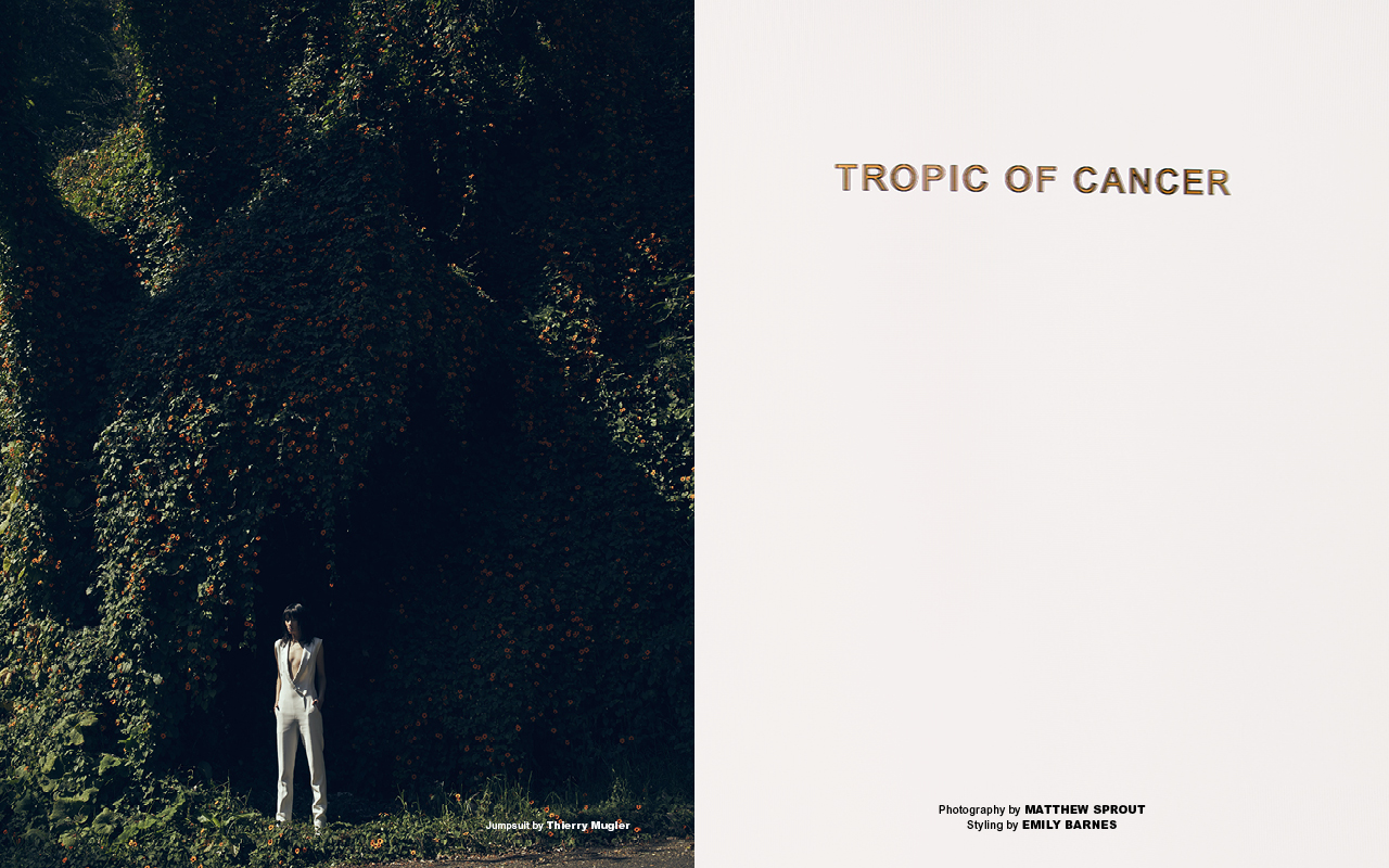 Tropic of Cancer #1