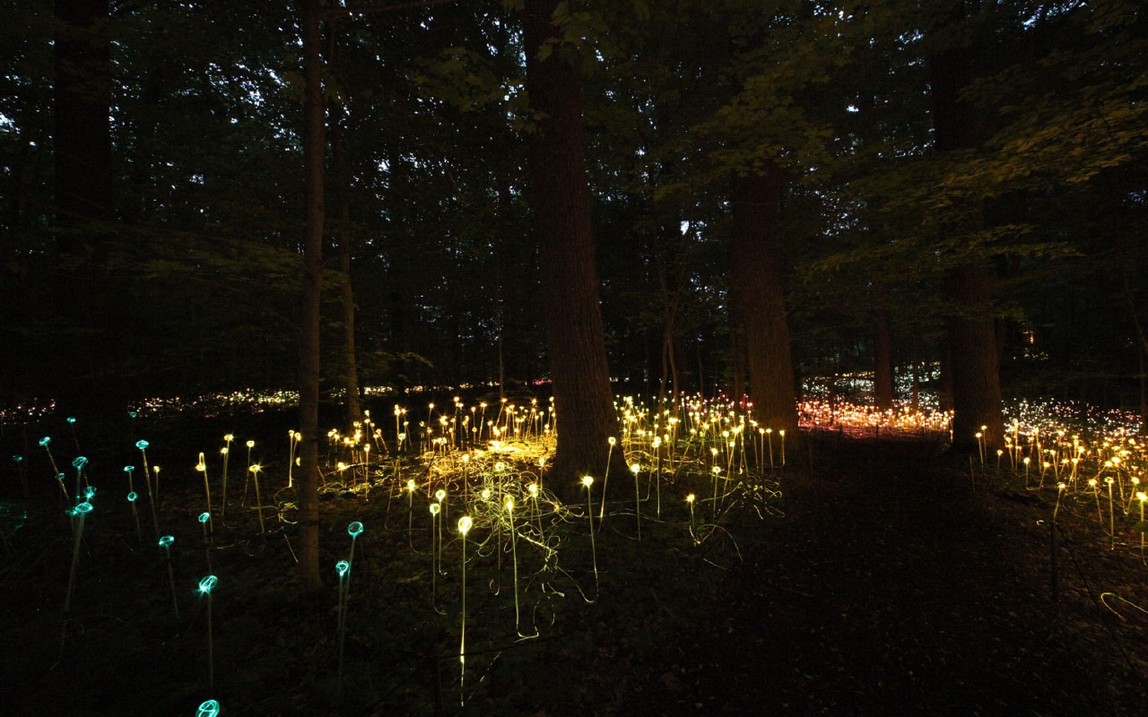 Light Artist – Bruce Munro #3